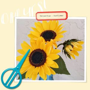 Crepe Paper Sunflower Tutorial